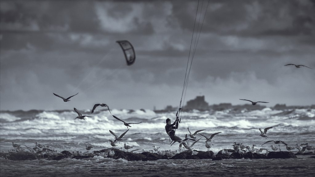kitesurf meeuwen